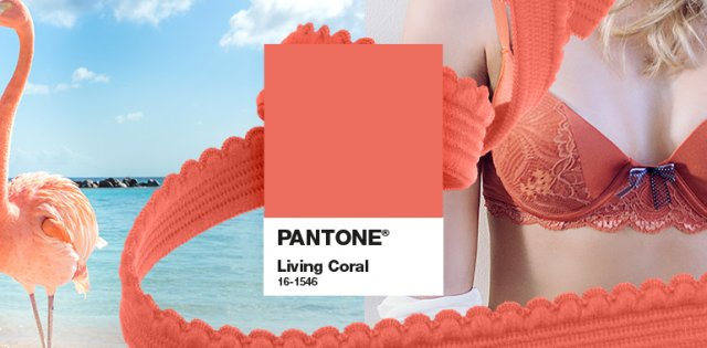 cor-do-ano-pantone